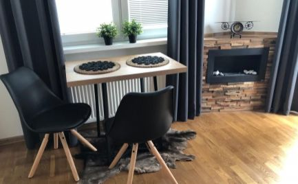 FOR RENT 1 BEDROOM DESIGN FLAT WITH A FIREPLACE NEXT TO EUROVEA Bratislava City Center EXPIS REAL