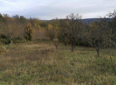 MAXFIN REAL ponúka - pozemok v obci Osuské