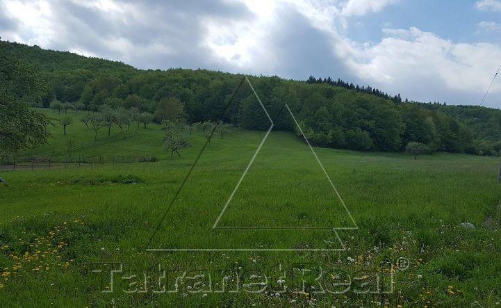 Na predaj veľký 50 árový pozemok v Papíne, len 20 km od Humenného