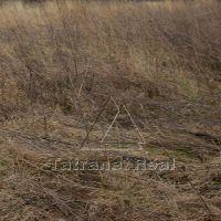 Poľnohospodárska pôda, Ptičie, 3000 m²