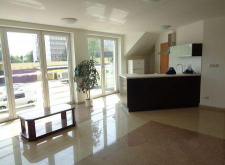 Na prenájom 100 m² byt v tichej lokalite Podunajských Biskupíc