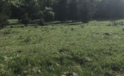 Stavebné pozemky  o rozlohe od 560 m2, 13 km od B. Bystrice - možnosť výstavby RD – cena 29 700 €