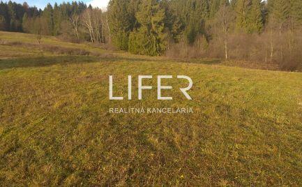 Ponúkame na predaj stavebný pozemok v obci Olešná