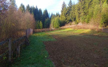 Stavebný pozemok v krásnej prírode a v tichom prostredí obce Olešná.