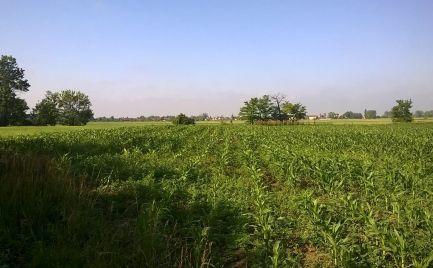 Slnečný pozemok na výstavbu RD, 975 m2, Tonkovce - 22 km od BA