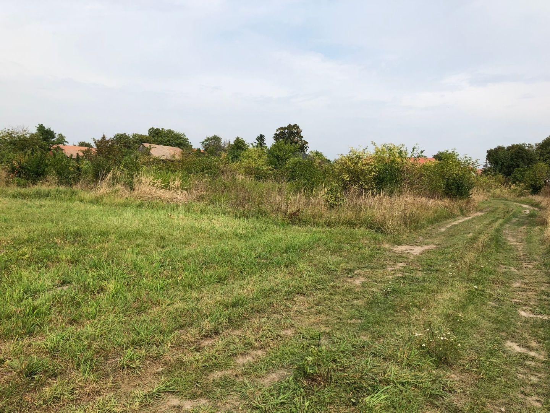 Záhrada-Predaj-Lehnice-55.00 €