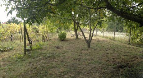 Pozemok pre RD vo Viničnom na ulici Pod lesom je na predaj