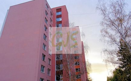 Najlepšia cena! Veľký 2 - izb. byt (ihneď prerobiteľný na 3-izb. byt) s peknou loggiou