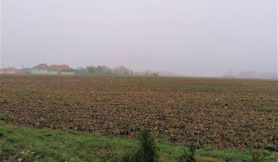 Predaj Pozemok 7798m2 na výstavbu RD, BD, 2D, 4D - Gabčíkovo - okr. Dunajská streda.TOP PONUKA!
