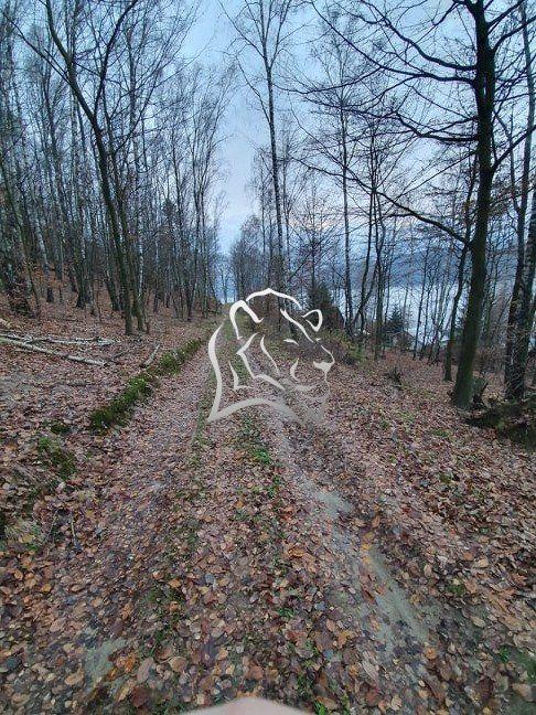 Rekreačný pozemok-Predaj-Holčíkovce-14800.00 €