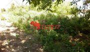 kunareality- pozemok na výstavbu rodinného domu v obci Siladice o výmere 616 m2