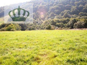 Na predaj pozemok v rekreačnej obci Regetovka, okr. Bardejov