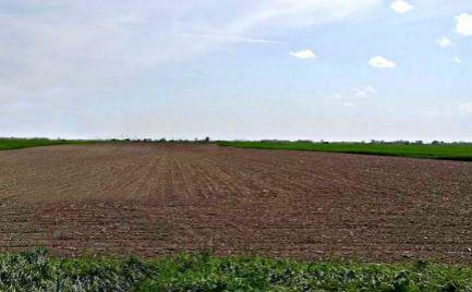 Orná pôda, lesný pozemok aj trvalý trávny porast