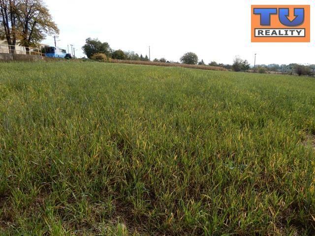 Pozemok pre RD-Predaj-Veľké Držkovce-14900.00 €