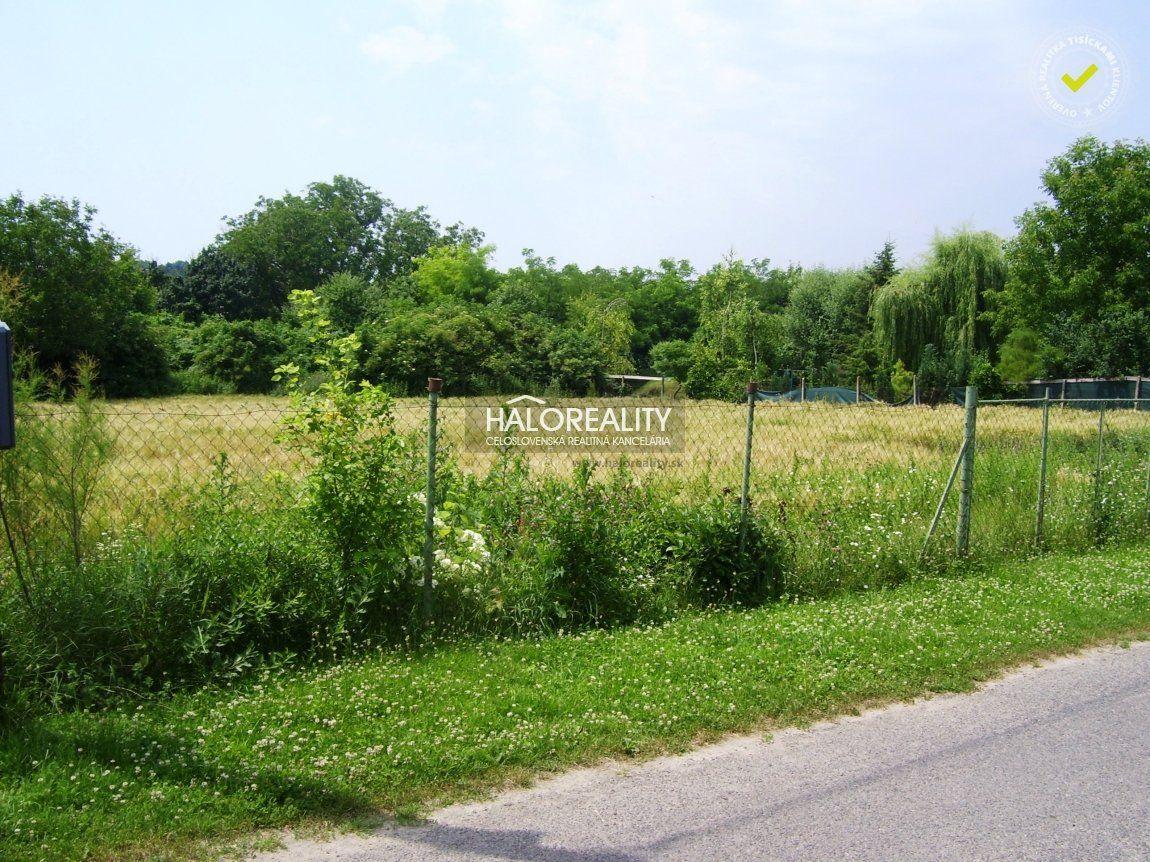 Pozemok pre RD-Predaj-Kamenica nad Hronom-15500.00 €
