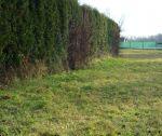 Pozemok na rodinný dom, 900 m2, záhrada, Rusovce / Bratislava V