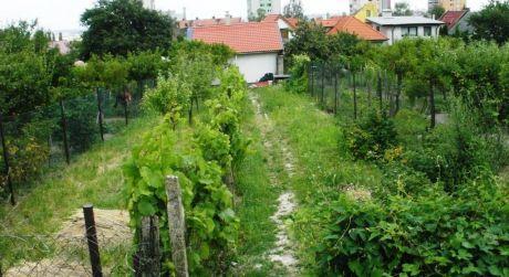 Hľadáte menšiu záhradku za dobrú cenu v Rači?- je na predaj