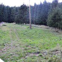 Trvalý trávnatý porast, Považská Bystrica, 2860 m², Čiastočná rekonštrukcia