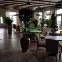 Reštaurácia, Práznovce, 400 m², Kompletná rekonštrukcia