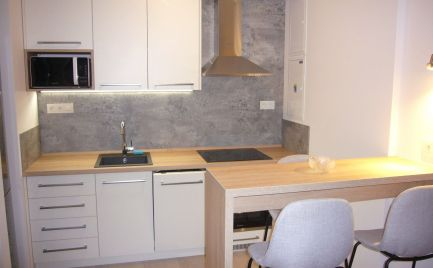 Ponúkame na prenájom 2-izbový byt  so samostatnými izbami v novostavbe URBAN RESIDENCE ktorý sa nachádza na Račianskej ulici.