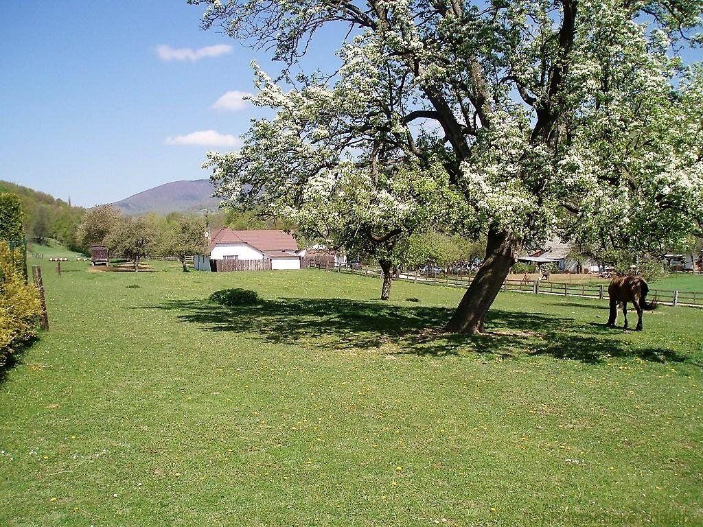 Poľnohospodársky objekt-Predaj-Zemianske Podhradie-450000.00 €