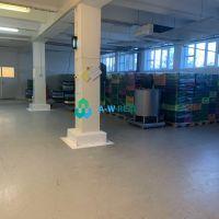 Výrobné, Dunajská Streda, 480 m², Kompletná rekonštrukcia