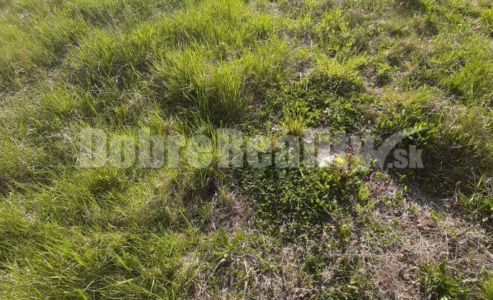 EXKLUZIVNE!..pozemok 6árový v obci Lužianky