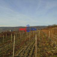 Obrábaný vinohrad 40 árov Modra, lokalita Hliny