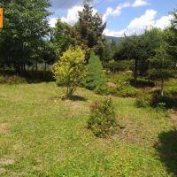 Záhrada, Vrútky, 780 m², Kompletná rekonštrukcia