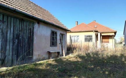 Rodinný dom s veľkým pozemkom - Kuchyňa