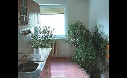 3i tehlový byt v Šalkovej - rezervované