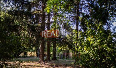 REALFINN  LEVICE /19km / -  Rodinný dom na predaj s krásnym  pozemkom  o rozlohe 8000 m2