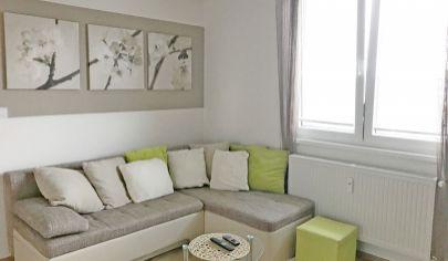 Krásny 1 izbový byt v Ružinove na Záhradníckej ulici