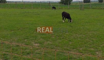 REALFINN - Podhájska  - Stavebný pozemok na predaj  neďaleko kúpaliska