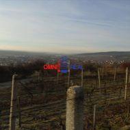 Obrábaný vinohrad 26 árov Vinosady, lokalita Záhumenice