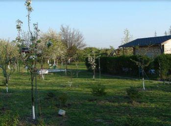 Záhrada medzi Svätým Jurom a Pezinkom 10 ár. - ovocné stromky, chatka