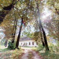 Iný objekt na bývanie, Pečovská Nová Ves, 842 m², Pôvodný stav