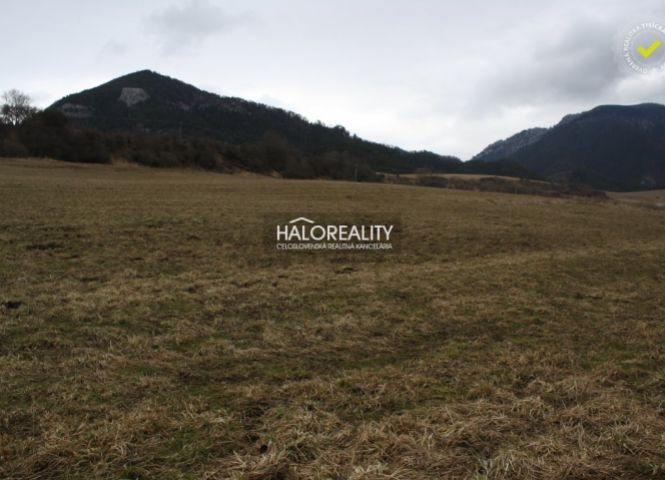 rekreačný pozemok - Ižipovce - Fotografia 1