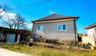 Exkluzívne APEX reality RD v Pastuchove, pivnica, garáž, čiastočná rekonštrukcia, 536 m2, / výmena za byt