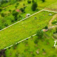 Trvalý trávnatý porast, Horné Srnie, 820 m²