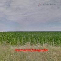 Poľnohospodárska pôda, Kráľov Brod, 20606 m²