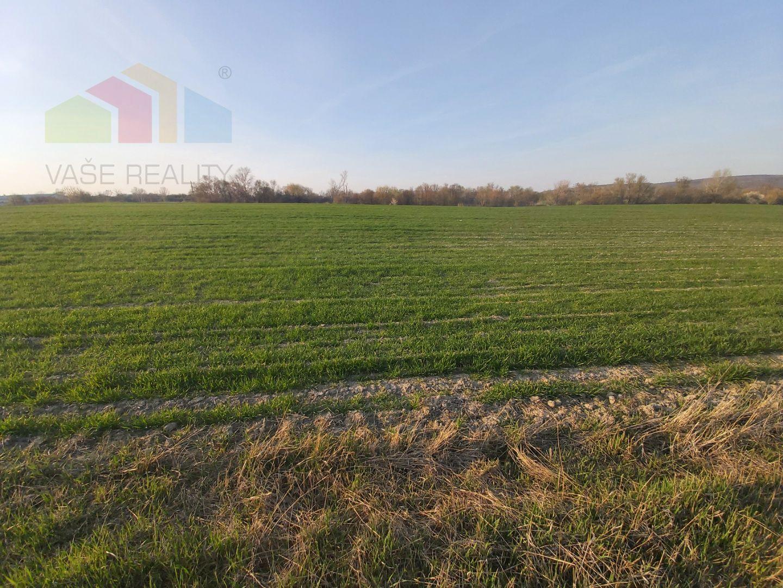 Lukratívny, slnečný pozemok 36800 m2 Štúrovo.