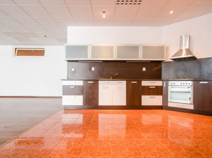 HLAVÁČIKOVÁ, 4-i byt, 295 m2 – GARÁŽ, vlastný vstup, BÝVANIE S PODNÍKANÍM, tichá lokalita