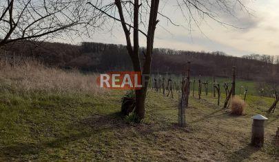 REALFINN - KOMJATICE - Pozemok, záhrada na predaj o výmere 3840 m2