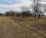 Rovinatý pozemok, 1380 m2, Považany