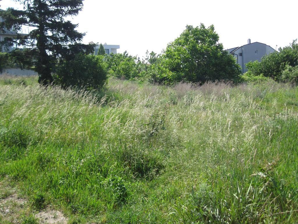 Pozemok pre RD-Predaj-Bratislava - mestská časť Staré Mesto-750.00 €