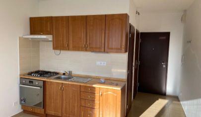 Slnečný veľký 1-izbový byt - Vlčince
