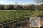 orná pôda - Veľká Ida - Fotografia 3