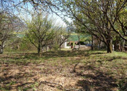 Záhrada s murovanou pivnicou Nové Mesto n/V - Vinohrady, 424m2 - voda