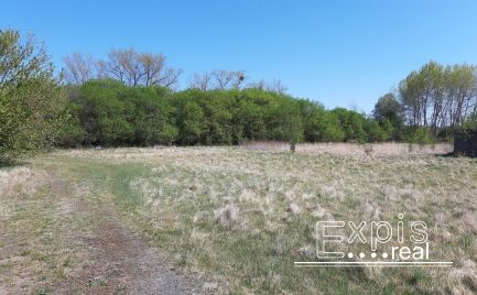 Predaj – Investičný  pozemok za obcou Studienka – EXPISreal